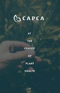 Guidelines_CAPCA10