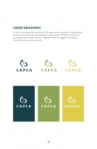 Guidelines_CAPCA11