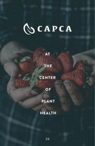 Guidelines_CAPCA26