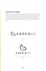 Guidelines_CAPCA37