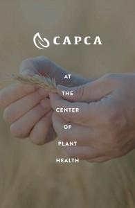 Guidelines_CAPCA41