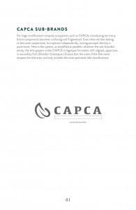Guidelines_CAPCA43