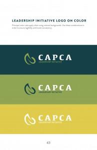 Guidelines_CAPCA45