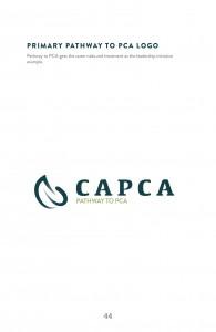 Guidelines_CAPCA46
