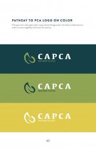 Guidelines_CAPCA47